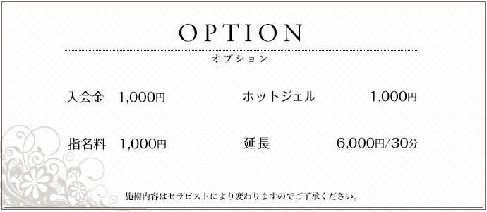 オプション